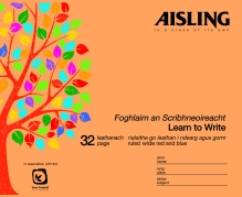 Aisling Learn To Write Book